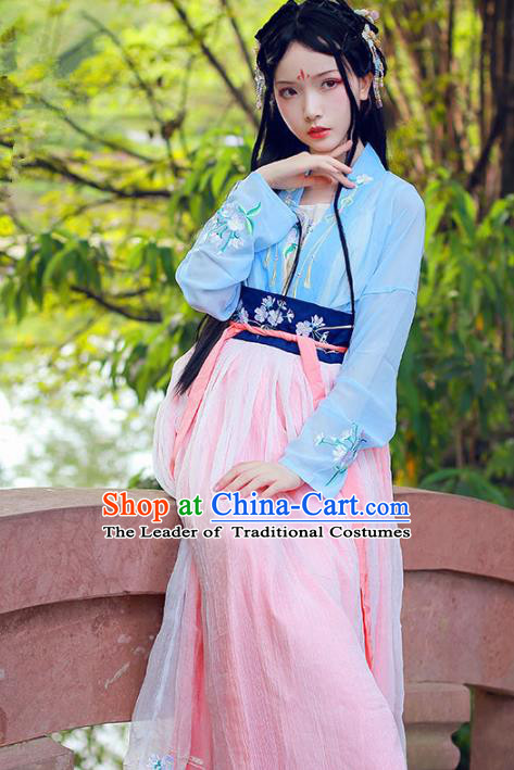 Chinese Ancient Swordswoman Dress Song Dynasty Young Lady Embroidered Hanfu Clothing for Women