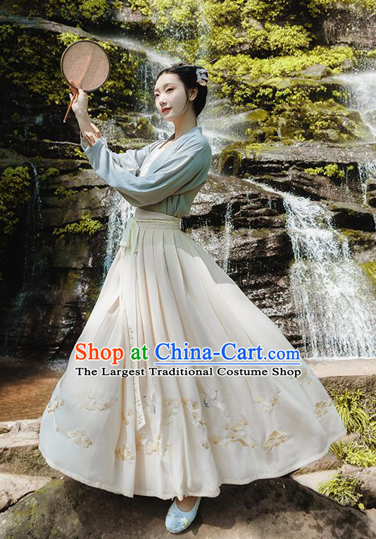 Traditional Chinese Song Dynasty Palace Princess Embroidered Costumes Complete Set for Women