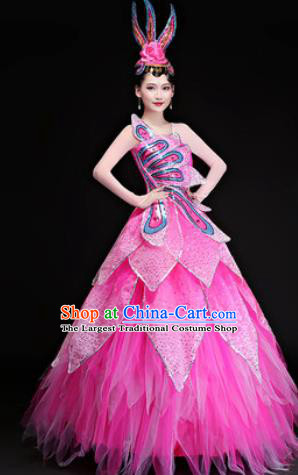 Professional Modern Dance Costumes Opening Dance Stage Show Pink Veil Dress for Women