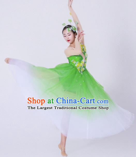 Chinese Traditional National Dance Costume Modern Dance Stage Performance Green Veil Dress for Women