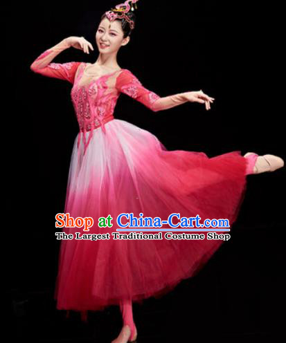 Chinese Traditional Opening Dance Chorus Rosy Veil Dress Modern Dance Stage Performance Costume for Women