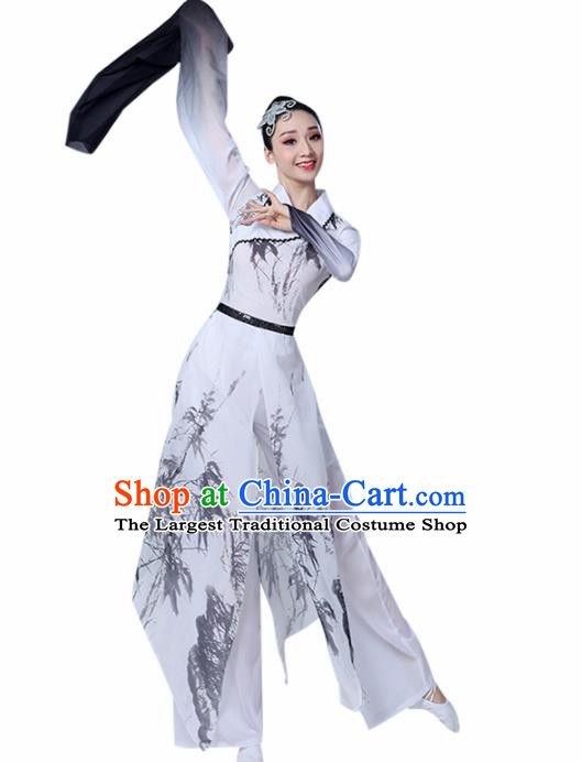 Chinese Traditional Stage Performance Costume Classical Dance Water Sleeve White Dress for Women