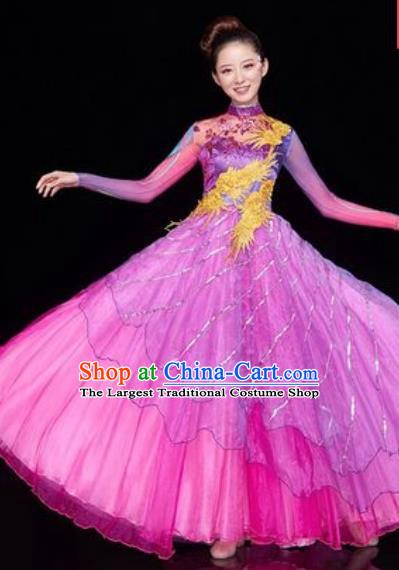 Chinese Traditional Spring Festival Gala Opening Dance Costume Modern Dance Rosy Veil Dress for Women