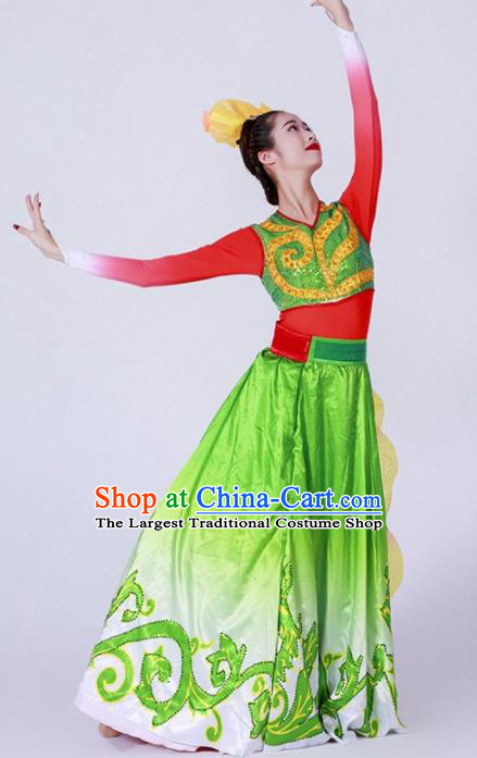 Chinese Spring Festival Gala Classical Dance Costume Traditional Modern Dance Green Dress for Women
