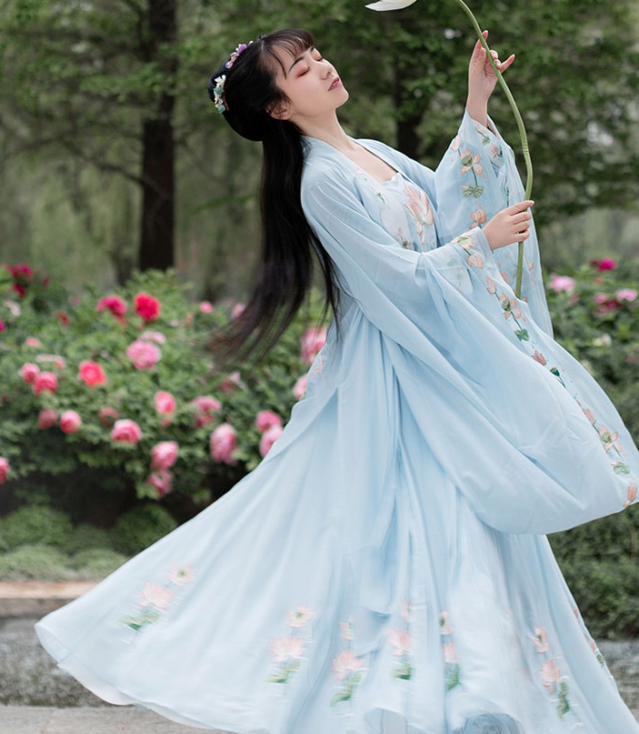 Traditional Chinese Tang Dynasty Blue Hanfu Dress Ancient Court Princess Embroidered Historical Costume for Women