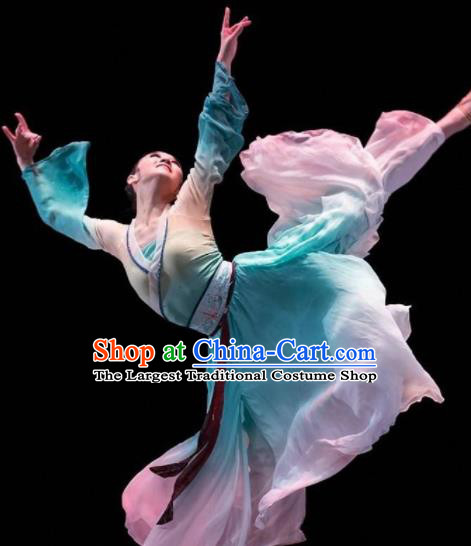 Beautiful Chinese Dance Pear Flower Dance Costume Traditional Classical Dance Dress for Women