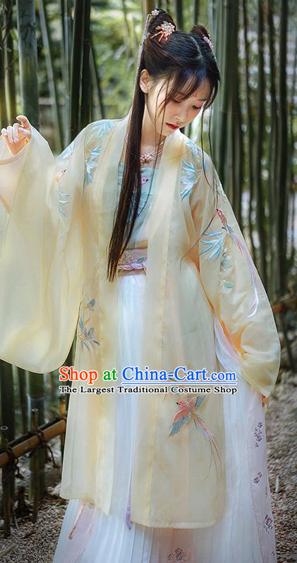Traditional Chinese Song Dynasty Princess Hanfu Dress Ancient Court Lady Replica Costumes for Women