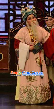 Mei Long Zhen Chinese Yue Opera Old Man Garment and Headwear Shaoxing Opera Elderly Chancellor Costumes