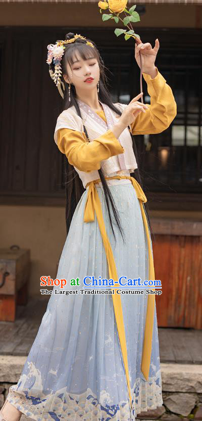 Traditional Chinese Ancient Ming Dynasty Young Lady Apparels Historical Costumes Village Girl Embroidered Hanfu Dress